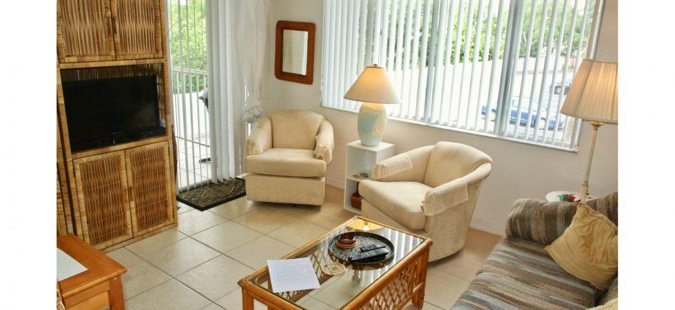 VS102BBL living room