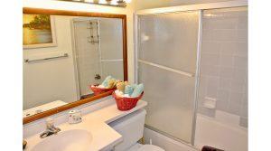 VS102BBL bathroom