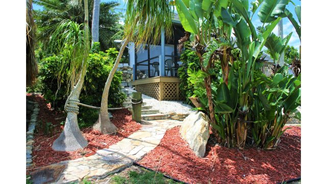 9PV TROPICAL LANDSCAPING